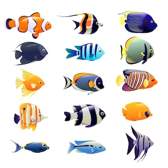 Conjunto de peces de color océano, animales submarinos