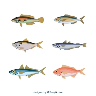 Conjunto de peces coloridos en estilo hecho a mano