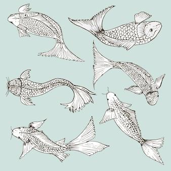 Conjunto de peces dibujados a mano, conjunto de dibujos de alimentos saludables