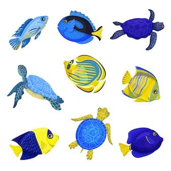 Conjunto de peces exóticos.