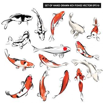 Conjunto de peces koi dibujados a mano