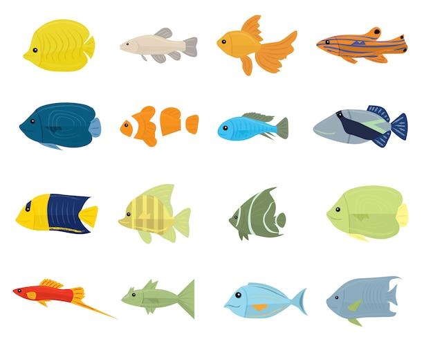 Conjunto de peces tropicales en blanco