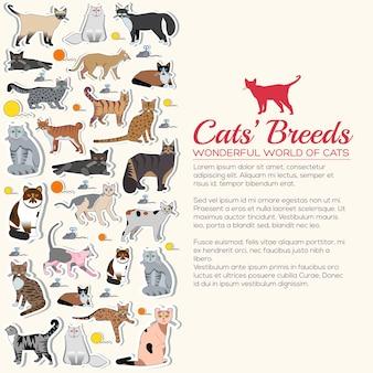 Conjunto de pegatinas de iconos de gatos de raza. colección de pegatinas de diseño de gatito diferente