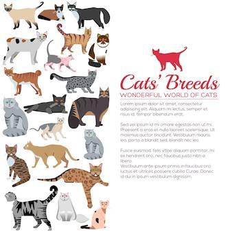 Conjunto de pegatinas de iconos de gatos de raza