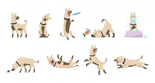 Conjunto de perro de dibujos animados