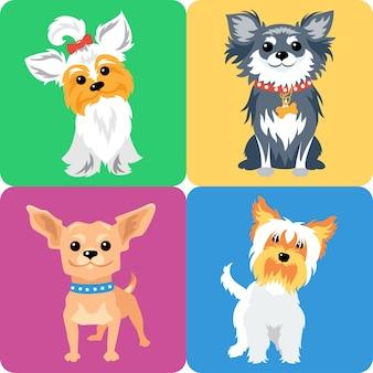 Conjunto de perros yorkshire terrier y chihuahua icono de raza diseño plano
