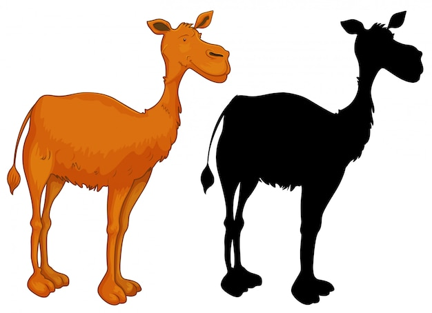 Conjunto de personaje camello.
