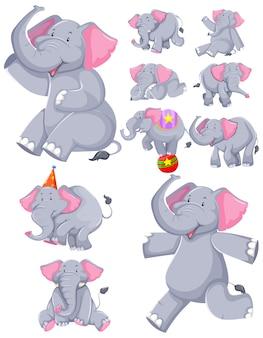 Conjunto de personaje de dibujos animados de elefante