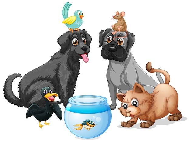 Conjunto de personaje de dibujos animados de mascotas