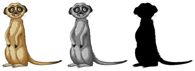 Conjunto de personaje de dibujos animados suricata