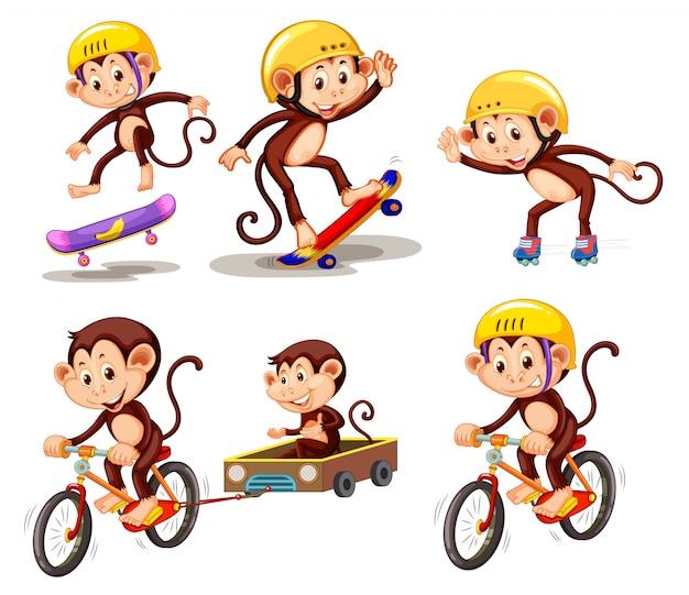 Conjunto de personaje mono con actividad.