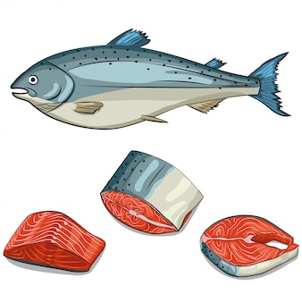 Conjunto de pescado, filete y filete de salmón. mano de dibujos animados dibujar ilustración aislada. iconos de mariscos.