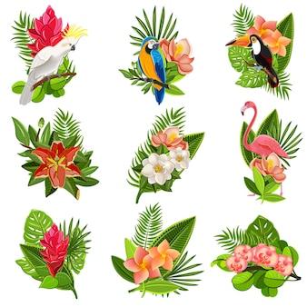 Conjunto de pictogramas de pájaros y flores tropicales.