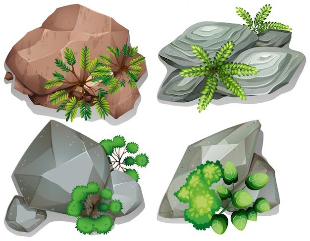 Conjunto de piedra y roca.