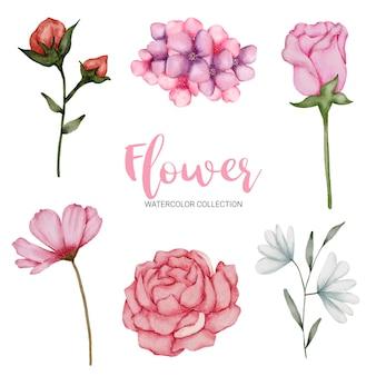 Conjunto de piezas separadas y unir a un hermoso ramo de flores en estilo acuarela