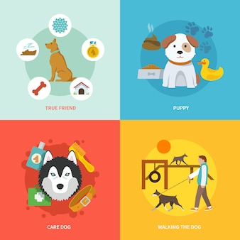 Conjunto plana de iconos de perro