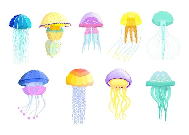 Conjunto plano creativo de diferentes medusas.