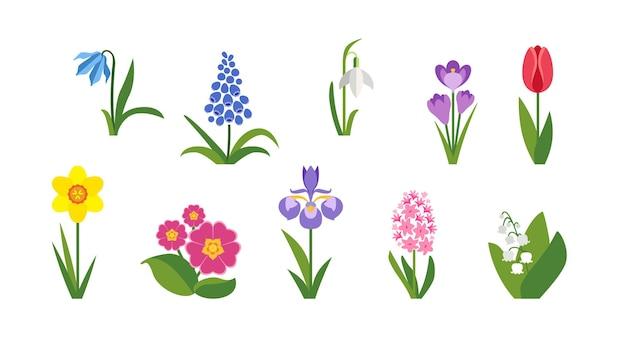 Conjunto plano de flores de primavera.