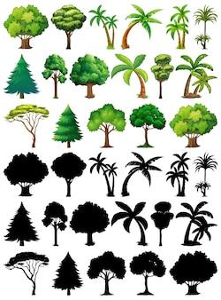 Conjunto de planta y árbol con su silueta.