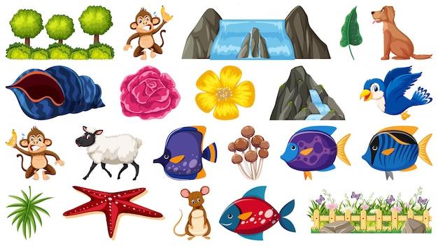 Conjunto de plantas y animales.