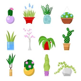 Conjunto de plantas caseras en maceta. plantas de interior decorativas y flores en macetas.