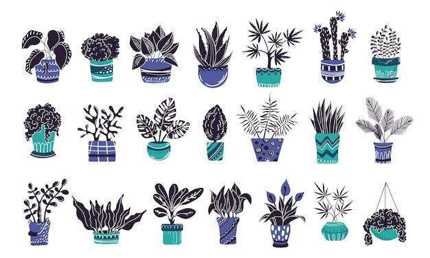 Conjunto de plantas caseras o flores en macetas.