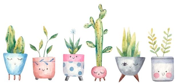Conjunto de plantas caseras, suculentas, monstera, cactus en macetas con ojos.
