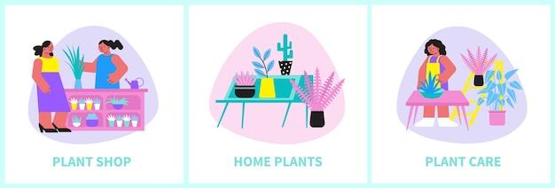 Conjunto de plantas caseras de tres composiciones cuadradas con personas de flores y texto editable