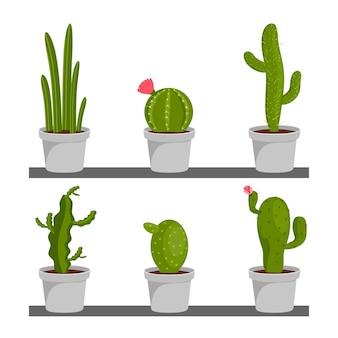 Conjunto de plantas de interior de cactus en macetas. iconos de cactus en un estilo plano. plantas
