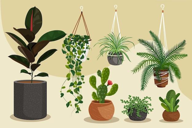 Conjunto de plantas de interior dibujadas a mano