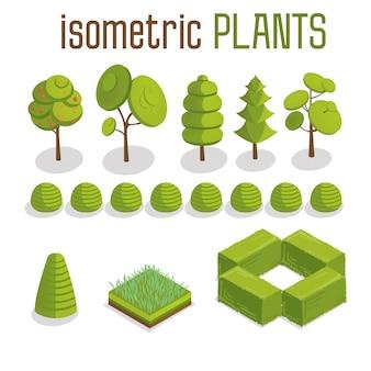 Conjunto de plantas isométricas de árboles, césped y ciudad.