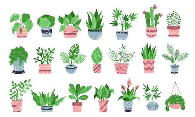 Conjunto de plantas en maceta, flores, jardín de casa, plana