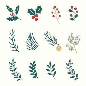 Conjunto de plantas navideñas