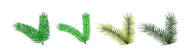 Conjunto de plantilla de ramas de árbol de navidad