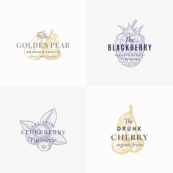 Conjunto de plantillas de logotipo, símbolos o signos abstractos de frutas y bayas premium. bocetos elegantes dibujados a mano de manzana, pera, mora, baya del saúco y cereza con tipografía retro. emblemas vintage.