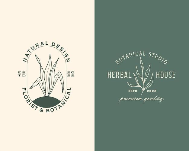 Conjunto de plantillas de logotipos o signos vectoriales florales y botánicos dibujados a mano