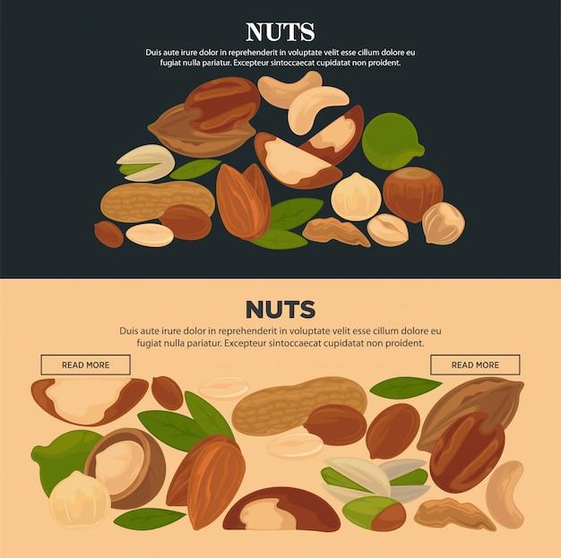 Conjunto de plantillas de páginas de internet promocionales nueces nutritivas saludables.