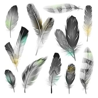Conjunto de plumas blancas y negras