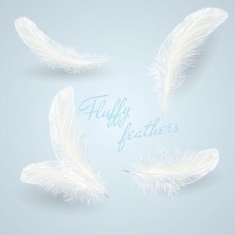 Conjunto de plumas caídas blancas mullidas blancas caídas aisladas