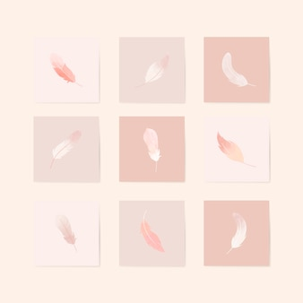 Conjunto de plumas flotantes