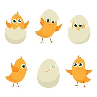 Conjunto de pollitos de huevos de pascua