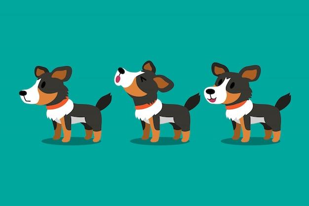 Conjunto de poses de perro de pastor americano de personaje de dibujos animados