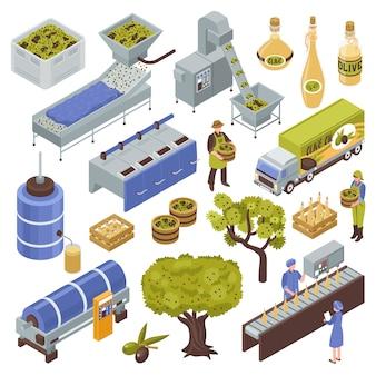 Conjunto de producción de oliva