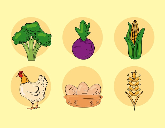 Conjunto de productos frescos de granja.