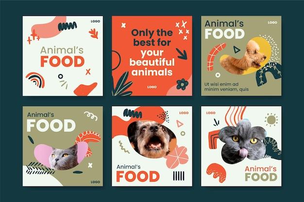 Conjunto de publicaciones de instagram de alimentos para animales