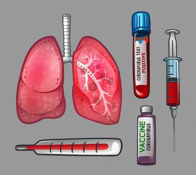 Conjunto con pulmones y jeringas y termómetro y vacunas.