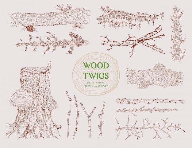 Conjunto de ramas de madera dibujadas a mano
