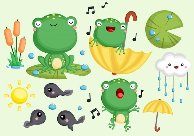 Conjunto de ranas