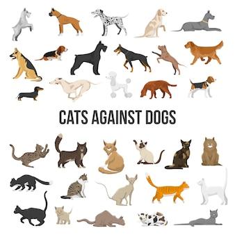 Conjunto de raza de perros y gatos