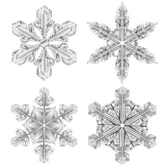Conjunto realista de copo de nieve en blanco y negro